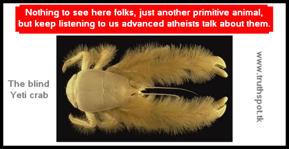 The Yeti crab is blind, yet still manages to see better than atheists with eyes that can see.